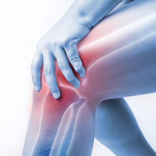 knee pain with transparent view of the knee