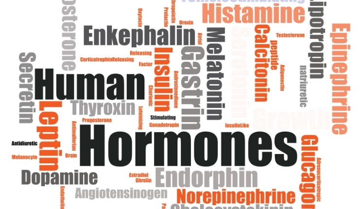 picture with the names of many human hormones